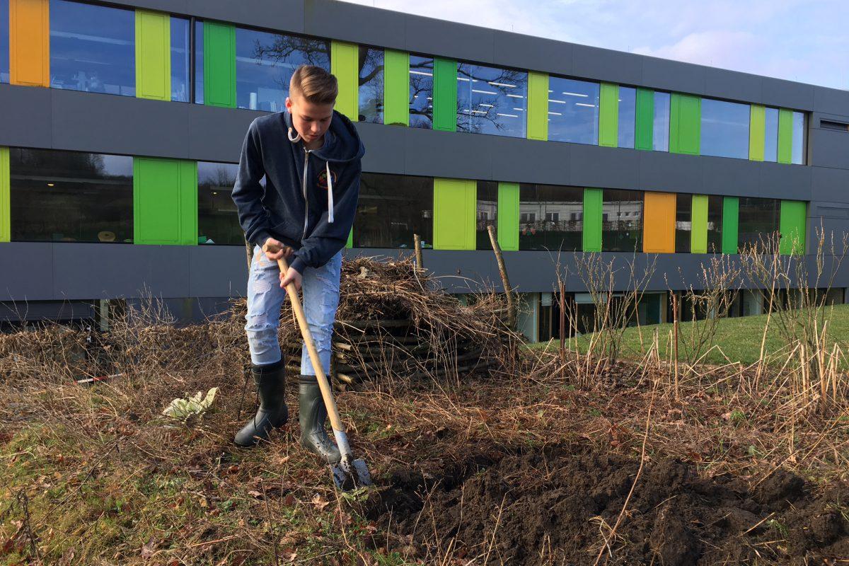 Schulgarten – es geht wieder los