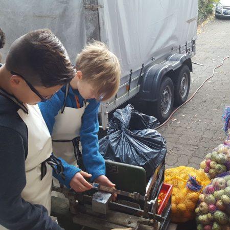 Die Schüler und Schülerinnen verarbeiteten viele Kilogramm Äpfel.