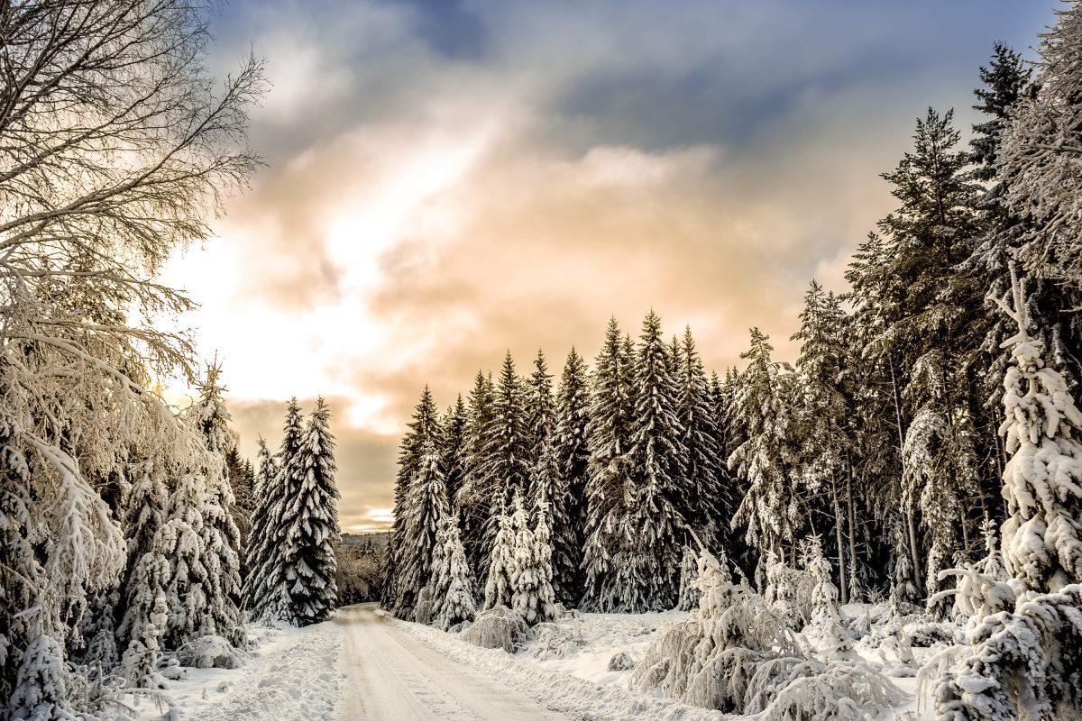 Schöne Winterferien und Erreichbarkeit der Schule